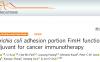 张晓燕/Jun-O Jin团队发现新型佐剂可用于肿瘤免疫治疗