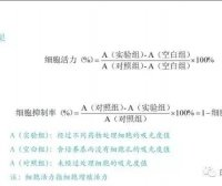 细胞培养方法(六):MTT检测细胞增殖