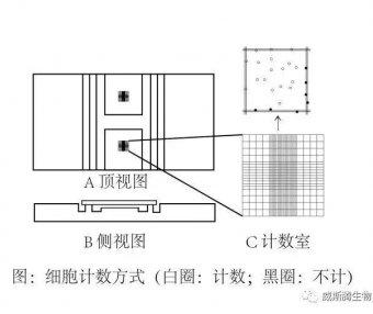 细胞培养方法(十二):细胞计数