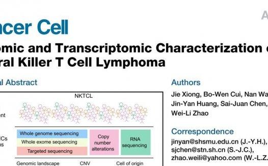赵维莅/陈赛娟/黄金艳合作揭示NK/T细胞淋巴瘤的致病分子机制