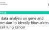 最新ceRNA纯生信分析文献解读