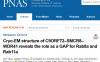 戚世乾/闫创业联合研究揭示C9orf72复合体结构和全新功能