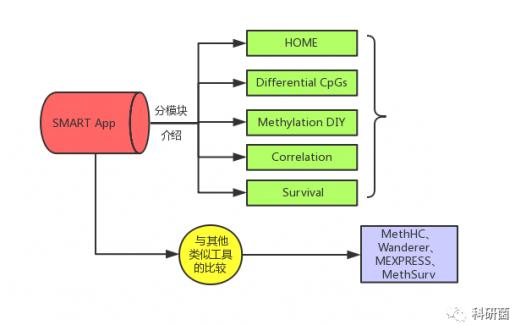 SMART App:DNA甲基化综合分析网页工具介绍