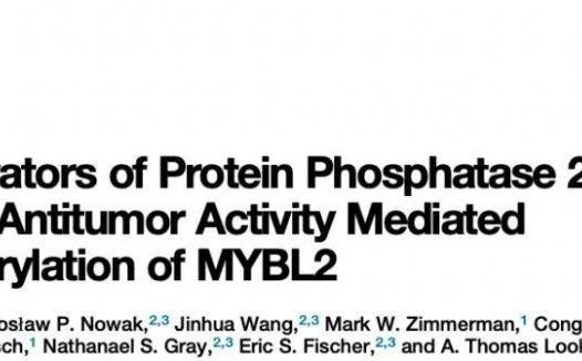 蛋白磷酸酶PP2A变构激活剂通过促进MYBL2去磷酸化而实现广泛的抗肿瘤活性