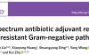 朱奎/沈建忠团队发现新型广谱抗菌增效剂