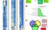 文献解读:结直肠癌血浆、组织特异性miRNA表达模式及功能分析
