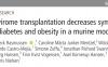 粪便移植或可治疗肥胖和2型糖尿病 微生物宝藏医用价值潜力巨大