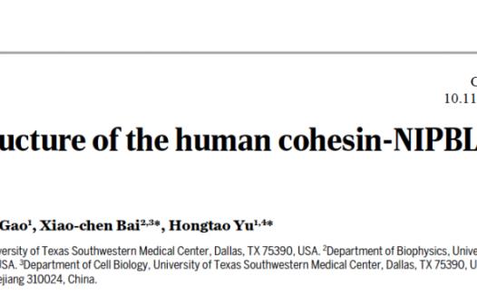 于洪涛/白晓辰组合作报道人类粘连蛋白三维结构