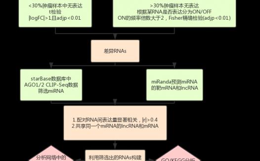文献解读:3分的ceRNA生信分析文章思路