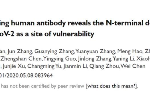陈薇院士发现具有强新冠病毒中和能力的抗体并成功解析复合物结构