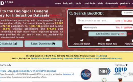 BioGRID:蛋白质相互作用数据库