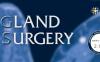 Gland Surgery 2020年影响因子2.190分