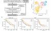 文献解读:肝细胞癌的代谢相关分子分型