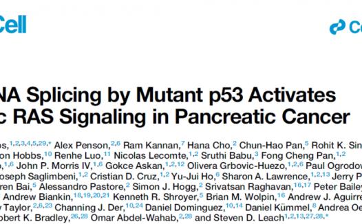 胰腺癌中p53突变对Ras信号持续激活的机制