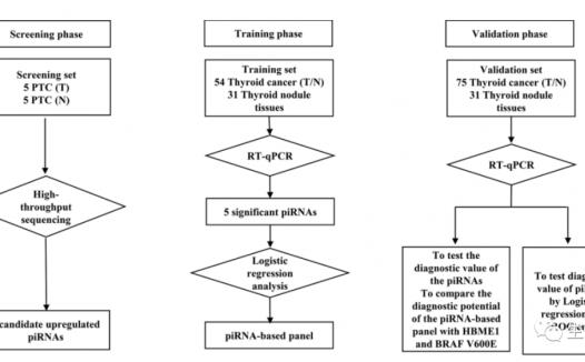 文献解读:甲状腺乳头状癌piRNA诊断标志