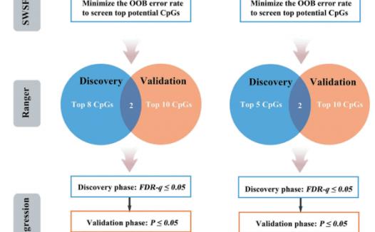文献解读:生信分析两个基因交互作用思路