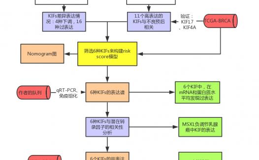 文献解读:纯生信基因家族预测模型思路