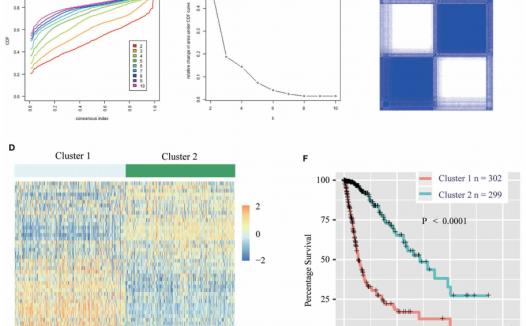 文献解读:甲基转移酶相关因子的预后分析