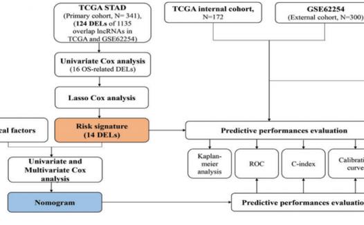 利用14-lncRNA Signature构建列线图预测胃癌患者预后生信分析思路