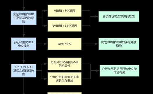 如何系统分析免疫微环境对病毒感染