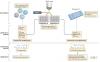 单细胞测序-如何选择适合的scRNA测序方法