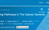 TCGA中的致癌信号通路