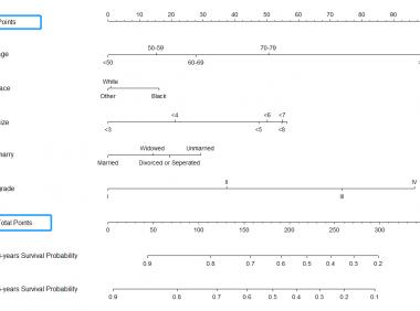 临床预测模型:计算nomogram预测总分并进行危险分层