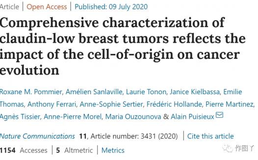 Claudin-low亚型乳腺癌的综合特征分析揭示细胞起源对肿瘤进化的影响