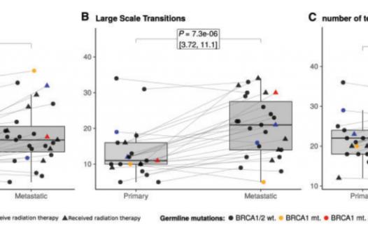 Annals of Oncology文献解读:HRD热点追踪