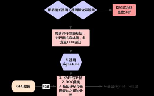 6-基因signature预测头颈部鳞状细胞癌患者的生存