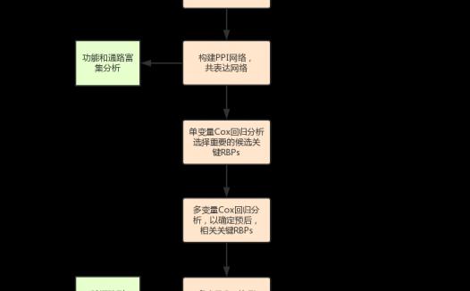 RNA结合蛋白相关的肺腺癌预后模型的开发和验证
