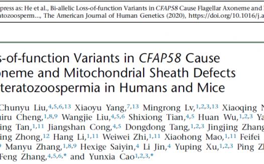 曹云霞/张锋团队等鉴定新弱畸精子症致病基因CFAP58