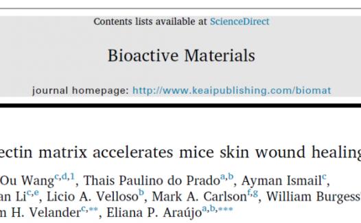 Yuguo Lei/王欧等合作发现新型纤维蛋白基质可促进小鼠皮肤伤口愈合