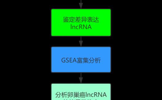 基于全基因组拷贝数变异的卵巢癌中3个lncRNA预后标志物的构建