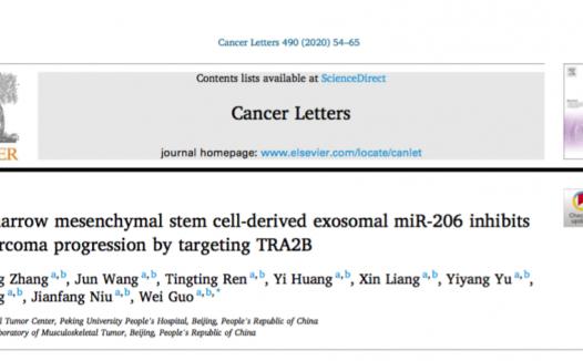8-10分SCI文章套路教学系列课:细胞交互套路miRNA