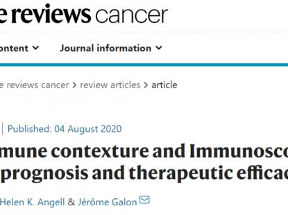 综述:免疫环境和免疫评分在癌症预后和治疗功效中的作用