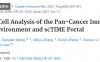 scTIME 泛癌的角度来刻画肿瘤免疫微环境的共性以及肿瘤类型的特异性