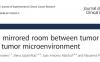 盘点国自然热点:肿瘤微环境的最新研究方向(下)