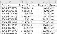 Graphpad为例展示方法生存资料的获取、整理与生存曲线绘制