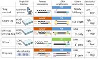 单细胞RNA测序技术在肿瘤微环境研究中的四大招数