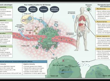 AI科研绘图-肿瘤免疫治疗1