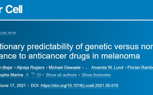 最近的研究结果表明,在没有基因改变的情况下也可能出现耐药性