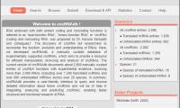 cncRNAdb数据库:cncRNA研究必备