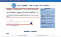 m6A2target:为m6A相关研究提供候选基因和研究思路