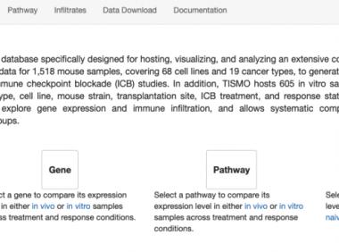 TISMO 老鼠免疫浸润评价数据库