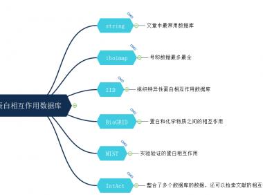 蛋白相互作用数据库和分析方法