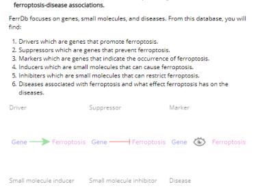 Ferrb数据库:助力细胞铁死亡生信文章